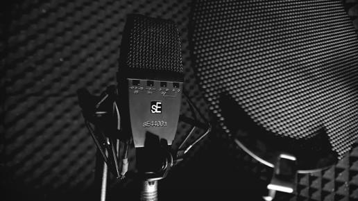 Microphone sE Recording Studio